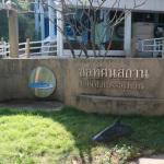 Ко Сичанг: Музей морской жизни Cholatassathan
